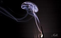 Fumo (Alessandro Mortola) Tags: closeup fumo nitidezza colori sharpness photo picture light colors