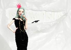 BaroQue PoP (NuminaDolls) Tags: numina numinadoll numinadolls sung resindoll resinbjd resindolls resinballjointeddoll fashion fashiondoll fashionbjd fbjd fashiondolls fashionballjointeddoll bjd balljointeddoll paulpham dollcis doll dolls