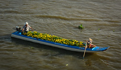 Wooden boats on Mekong River in Southern Vietnam (phuong.sg@gmail.com) Tags: activity amazing asia asian atmosphere boat busy cantho canal chanel color colorful colour crowd crowded cuulong day delta farmer farmers flea float floating group landscape landscaping lively market mekong nganam open people person river row rowing scene soctrang trade travel vietnam vietnamese water wooden
