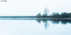 Silence (KESS Photos) Tags: minimalism españa spain valledellago d750 nikon arbol tree lago lake agua water paisaje landscape asturias naturaleza nature somiedo