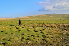 JRJ_6687 (jjay69) Tags: dartmoor holiday britain uk devon cornwall england airbnb easter lydford outdoors outdoor moors moorland barren rural countryside peaceful wild walk walking oneperson whitetor