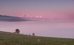 The Tatra mountains over the sea of mist (Dariusz Wieclawski) Tags: nikond700 nikon 2470mm28 d7002470mmf28 leefilters lee leegrad dawn sunrise tatra fog spring