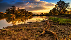 river reflections (bocero1977) Tags: grass landscape sunset nature reflection germany mood outdoor light trees blue beach scenery river sundown shore dawn sky green meadow water colors clouds
