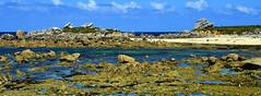 colorations printanières sur la côte des sables (eric-foto) Tags: leclick plouescat poulfoên finistère pennarbed nikond800 bretagne breizh brittany bzh littoral mer sea rochers