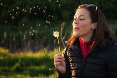 Dandelions (boggdanx) Tags: girl woman beautiful portrait blowing dandelions sunset warmlight nikond7100 50mm 18g