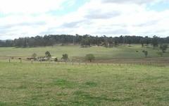 1052 Pinkett Road, Guyra NSW