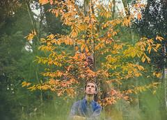 96/365 (Chris Gray Photo) Tags: autumn tree nature outdoors selfportrait self portrait portraiture colour people canon 50mm 365project fineart