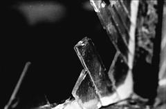 Oud gebroken glas - neopan1600 (EricWie) Tags: nikon f100 nikonf100 2485f284 2485284 fuji neopan 1600 fujineopan1600 analog analoog analogue film expired expiredfilm blackwhite bw canoscan8800