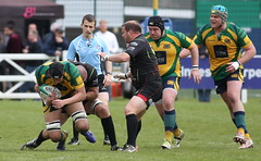 BW0Y3011 (Steve Karpa Photography) Tags: henleyhawks henley rugby rugbyunion game sport competition outdoorsport redruth
