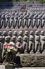 (yuki*) Tags: japan analog temple kamakura filmcamera kanagawa hase hasedera rollei35 fujirdpiii walksnap