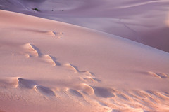 Alive (Michael Deleon Photo) Tags: sunset summer evening sand colorado purple unitedstates desert mosca greatsanddunesnationalpark
