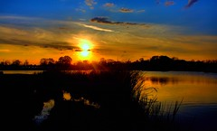 Day's End (Kenny Shackleford) Tags: sky reflection water grass clouds alabama montgomery blountculturalpark