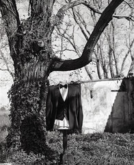 lui-ritratto (Valentina Calosci) Tags: blackandwhite selfportrait film darkroom mediumformat analogue 6x7 120mm autoritratti selfdeveloped cameraoscura selfprinted