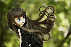Follow the wind (~Sharuya) Tags: noir planning groove pullip reg pullips jun regeneration junplanning