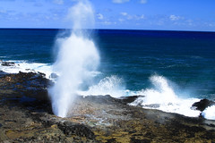 Spouting Horn (Alfred Hermida) Tags: nature beauty landscape hawaii kauai