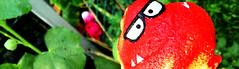 Garden Monster (alex) Tags: monster garden rednose recycling