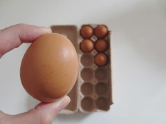 six (sonyacita) Tags: 6 brown eggs six utata:project=six6