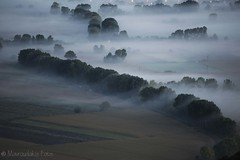 Morning mist (Mavroudakis Fotis) Tags: trees light sunset sky panorama plants cloud mist tree green nature field leaves silhouette misty fog mystery clouds forest woodland landscape dawn countryside haze scenery moody quiet village view streak cloudy outdoor horizon foggy scenic meadow peaceful wave atmosphere calm chilling silence valley stems mysterious ambient environment serene wilderness hazy stillness tranquil vapour meteorology emerge precipitation
