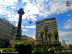 Damascus - Marja Square - syria  |   -  -  (Young syrian's Lens -   ) Tags: street old city travel winter summer sky white color art nature beautiful birds clouds canon wonderful square landscape photography fly timelapse spring amazing colorful asia flickr shot time photos outdoor 10 pigeon pigeons ngc photographers syria damascus siria syrian   syrien syrie artphoto  aplus         supershot     flickrsbest   superaplus aplusphoto    photosfromsyria photosofsyria photofromsyria
