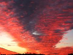 Clouds (vegeta25) Tags: cloud clouds fuji fujifilm felhő felhők myfuji s3200 giveusyourbestshot weekofnovember25 52weeksthe2013edition 522013 113picturesin2013 522013week48