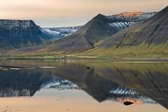 Imperfection (Danil) Tags: sun mountain snow reflection ice rock sunrise landscape mirror iceland europe farm daniel peaceful calm serene desolate landschap westfjords d600 bosma nundarfjrur flateyri