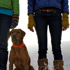 Just the Girls (blue mountain thyme) Tags: winter color hiking down birddog idaho mukluks justthegirls foxredpointinglab