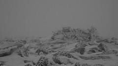 No room in the inn (Dieirdra) Tags: winter scotland aviemore cairngorms benmacdui munro