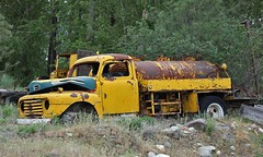 Information Requested (tocopixel) Tags: truck rust junkyard oldtruck mollydawg
