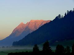 peace (misone2000) Tags: sterreich peace nebel natur wiese bio berge alpen sonne tal morgens frh massiv misone2000 waldv
