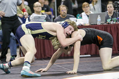 591A7864.jpg (mikehumphrey2006) Tags: 2017statewrestlingnoahpolsonsports state wrestling coach sports action pin montana polson