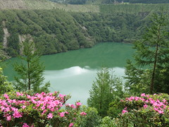 Crater Lake Azores (Skoda Girl) Tags: crater lake sete cidades azores flowers water landsape trees nature green