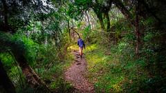 DSC7562 (Marcosracf) Tags: path man nature cambará riograndedosul brasil brazil aparadosdaserra aparados eco tourism a6000 ilce6000 rokinon 12mm f2 ncs