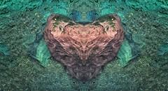I Heart You (Philip Kuntz) Tags: valentinesday valentine hearts romance love holiday