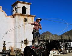 Trick Roper (Rich Reecer) Tags: trick roper horse old tucson west cowboy