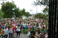 Missa Domingo de ramos 2017