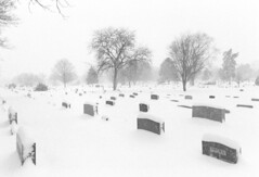 Blanket (Jetcraftsofa) Tags: nikonfm nikkor2428 hp5 35mm blackandwhitefilm yuki snow graveyard