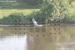 77D-Viewfinder-AF-Zone-Heron-02-65 (dojoklo) Tags: autofocus af viewfinder afpoints afsquares canon eos canon77d 77d body controls dial howto use learn tips tricks tutorial book manual guide quickstart setup setting