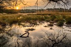 Sunrise (Sinse008) Tags: sunrise nikon d3100 netherlands landscape nature lake reflextion