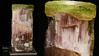 Elbaite (A Variety of Tourmaline)  NHMLA 24985 (Stan Celestian) Tags: elbaite tourmaline nhmla24985