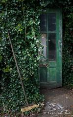 The Broom (Ivan van Nek) Tags: d7200 bezem nikon nikond7200 noordholland krommenie northholland nederland paysbas dieniederlande deur klimop