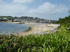 18 April 2017 Scilly (31) (togetherthroughlife) Tags: 2017 april scilly islesofscilly