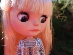 Peregrine was enjoying the garden... until she saw a slug!