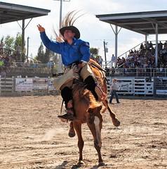 P3110163 (David W. Burrows) Tags: cowboys cowgirls horses cattle bullriding saddlebronc cowboy boots ranch florida ranching children girls boys hats clown bullfighters bullfighting