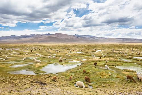 Peru_BasvanOortHR-102