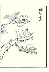 Japanese persimmon and Japanese white-eye (Japanese Flower and Bird Art) Tags: flower persimmon diospyros kaki ebenaceae bird whiteeye zosterops japonicus zosteropidae shotaro asami nihonga woodblock picture book japan japanese art readercollection