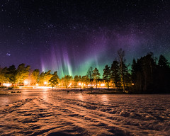 Bye for now (JH') Tags: nikon nikond5300 nature northernlights d5300 wideangel exposure evening trees tree ice photoshoot photography auroraborealis aurora borealis sky sigma sweden stars snow field forest heaven landscape longexposure night colors green blue beautiful beach lake 2017 spring