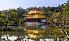 Gold leaves (Aresio) Tags: kinkakuji kyoto japan japanesepavillion architecture landscape water reflection trees