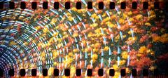 35mm double exposure in a 620 Brownie (No Stone Unturned Photography) Tags: doubleexposure shoprite fuji 200 expired film kodak brownie box camera modeld 35mm 620 six20 flowers footbridge sprocketholes arizona