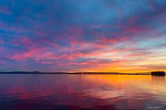 Photographs (Wilson Lam {WLQ}) Tags: sanfrancisco sunrise burn sanmateobridge
