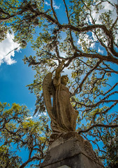 Savannah (Jon Ariel) Tags: savannah bonaventure bonaventurecemetery ga georgia garden statue angel